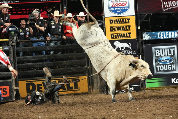 The Bad Touch The Professional Bull Riders