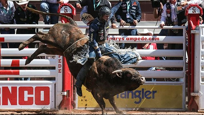 Frost Wins Pool A At Calgary Stampede Davis And Vieira