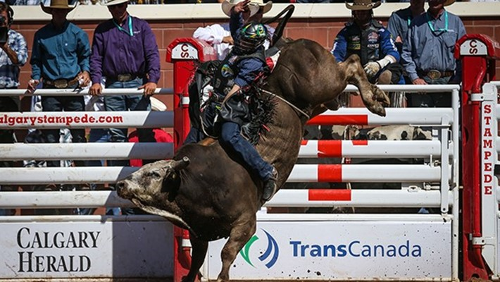 Calgary Stampede Lima Looks To Make History The
